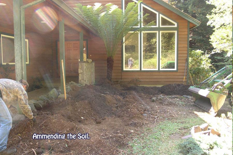 Ammending the soil