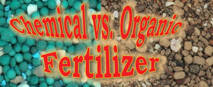 Chem vs Organic
