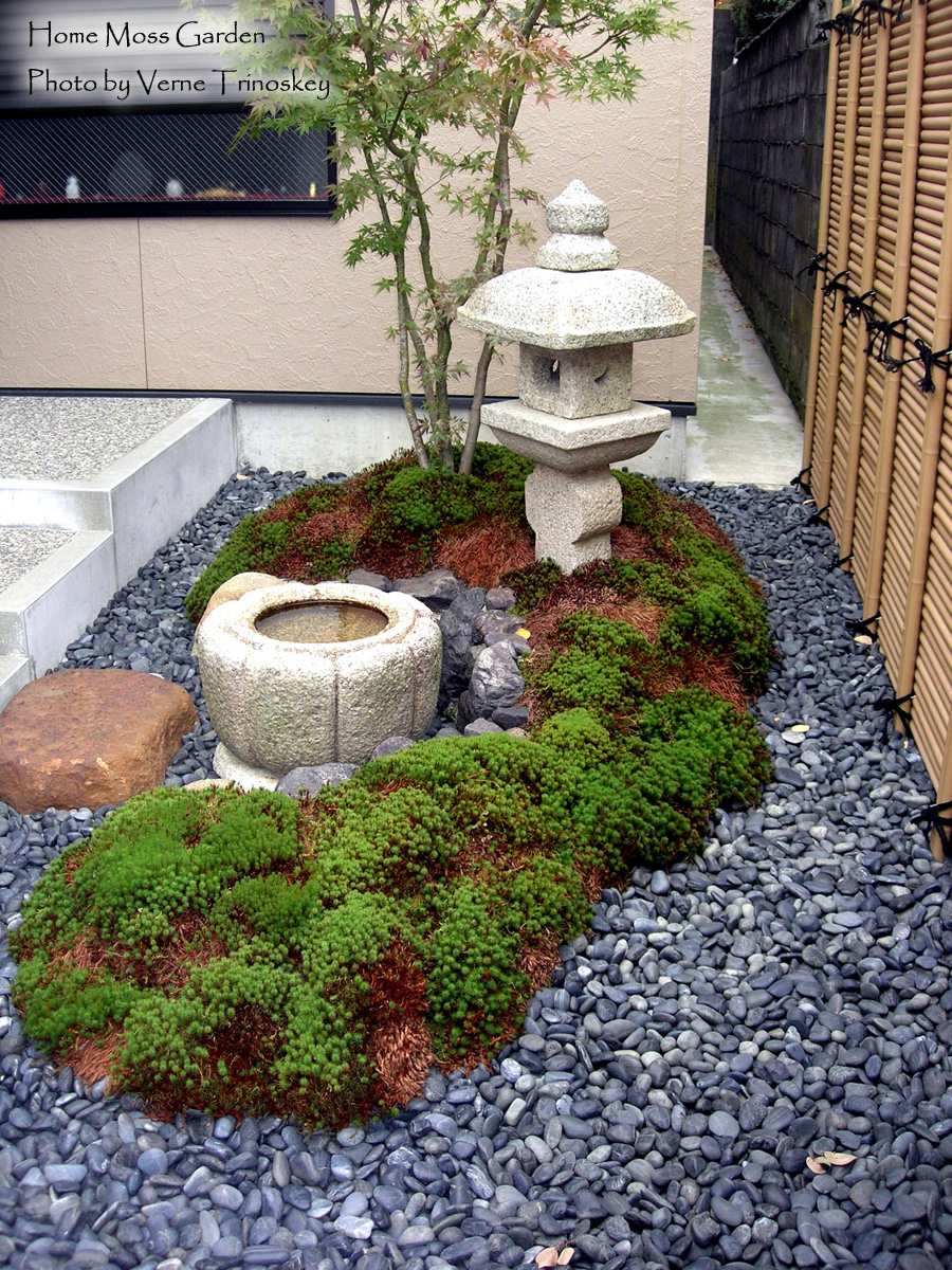 Small Home Moss Garden in Kyoto, Japan