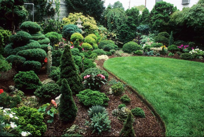 Rezek Garden 2