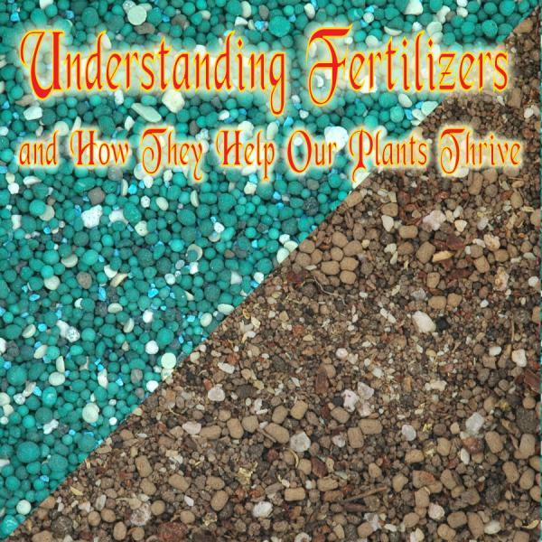 understanding fertilizers