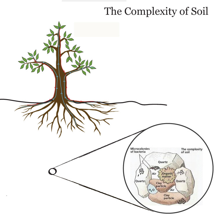 The complexity of Soil